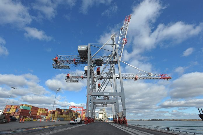 Termont Montreal Inc. places order with Liebherr for STS and RMG cranes