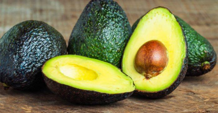 Kuehne+Nagel Provides Dubai with Premium Avocados