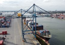 Antwerp Container Terminal Readies for Two Liebherr Ship to Shore Cranes